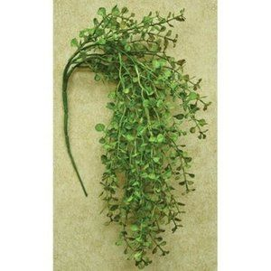 Accents - Light Green Peppergrass Hanging Bush, 19""